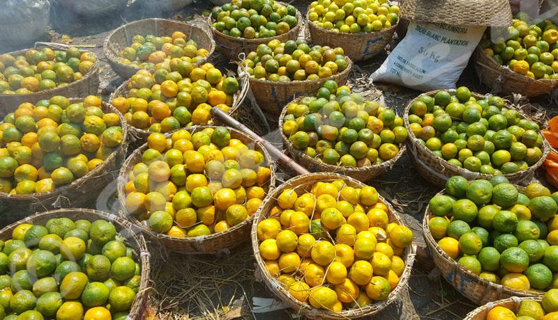 Covid-19 : les vendeuses des fruits travaillent à perte