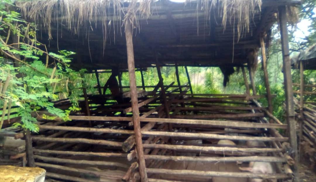 Elevage de porcs interdit au bord de la Ntahangwa, les éleveurs grognent