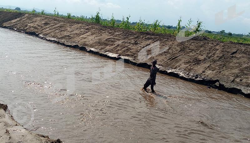Gihanga/ Kajeke : 118 maisons inondées dont 5 complétement détruites