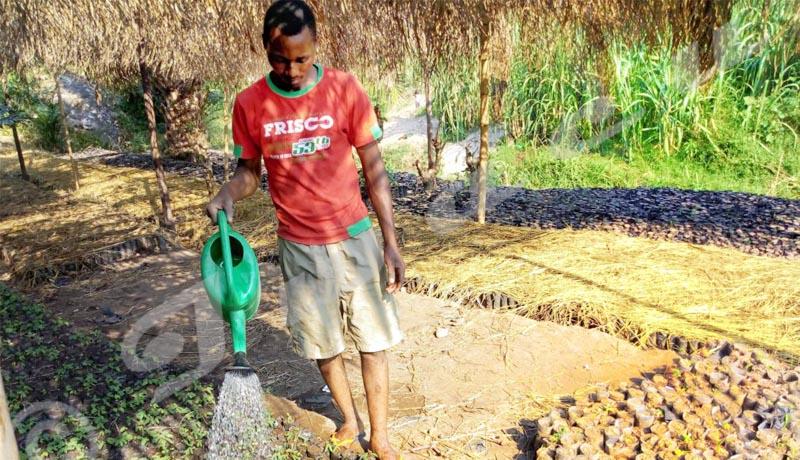 Emmanuel Niyoyabikoze, le soldat de l'environnement
